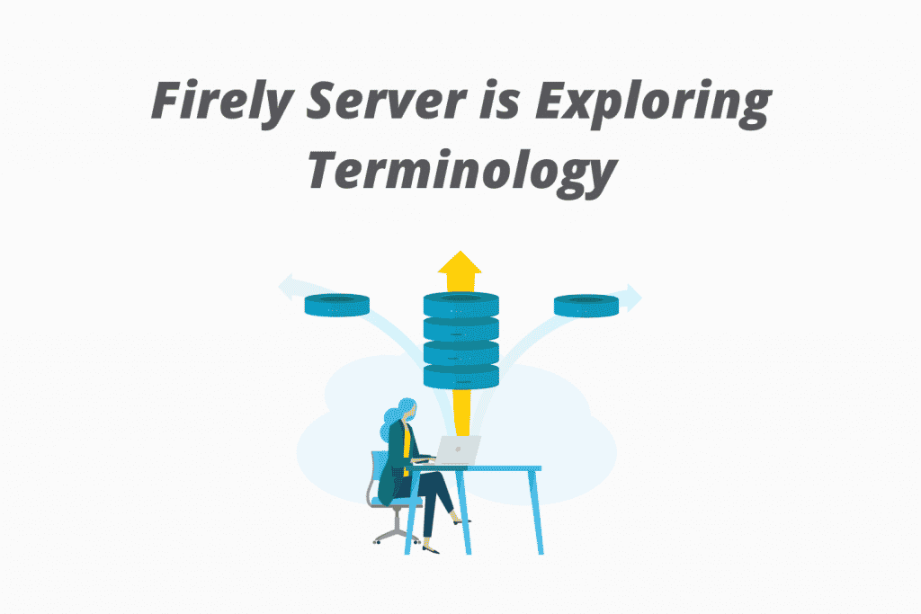 Firely Server Terminology